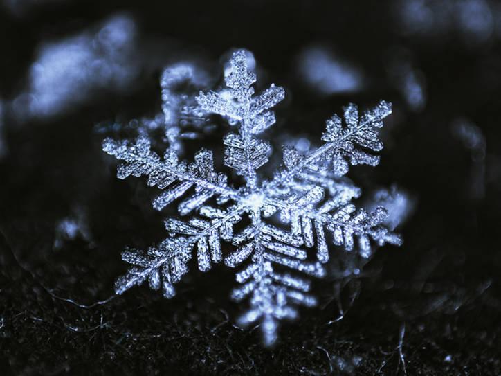 Generazione snowflake: verso una eccessiva sensibilizzazione deldiritto?